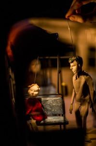 Kleine Rode Eva - © Diego Franssens