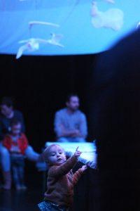 Hemelsblauw © Bart Van der Moeren